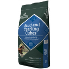 Stud and Yearling Cubes