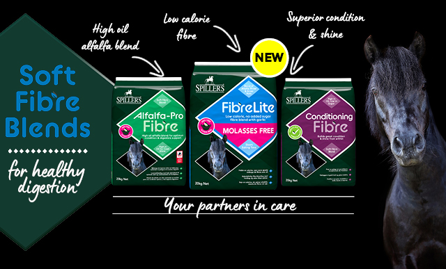 SPILLERS Fibre Lite Molasses Free Banner Mobile