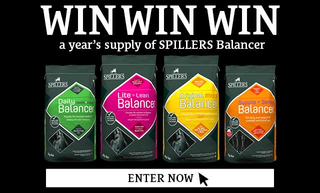 WIN Balancer Banner Mobile