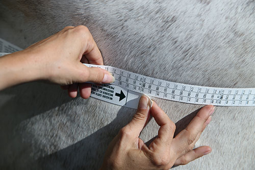 How to use a weigh tape
