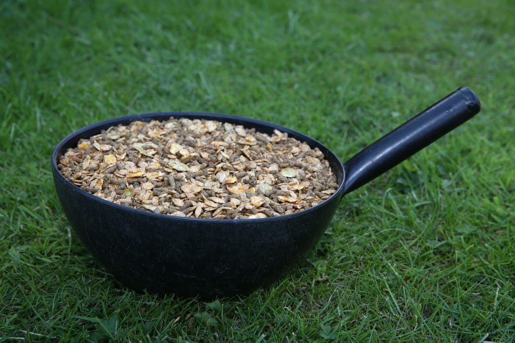 Horse Feeding: The 10 Golden Rules | Spillers Feeds