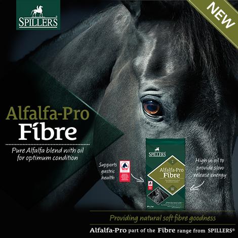Alfalfa-Pro