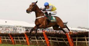 Retrained Racehorse