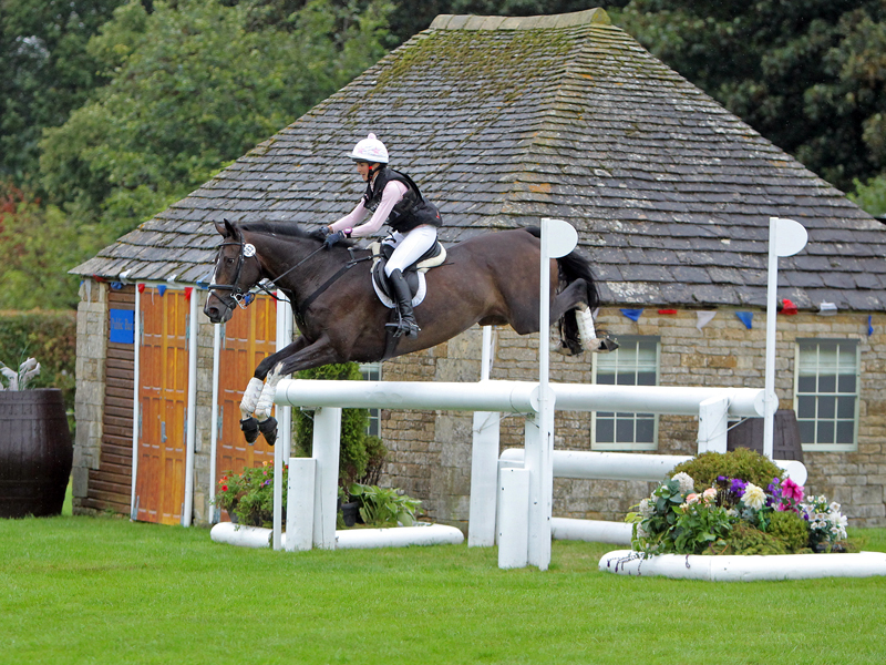 International horse trials