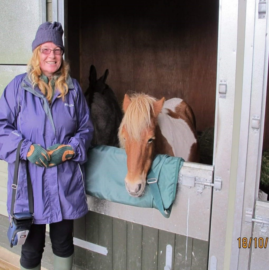 Volunteering with horses